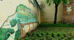 5 # Rozmowy o mieście - Jak kiełkuje lubelska zieleń?