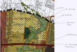 Poparcie wniosku o ochronę suchych dolin w rejonie ul. Koncertowej